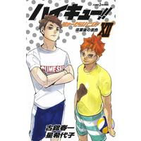 【Novelized item】Haikyu!! Shousetsu ban!! vol.12